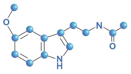 A melatonina é produzida no período noturno