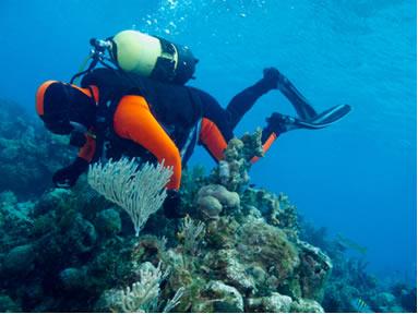 O mergulhador está usando um cilindro com porcentagens apropriadas de gases, considerando a grande profundidade em que se encontra