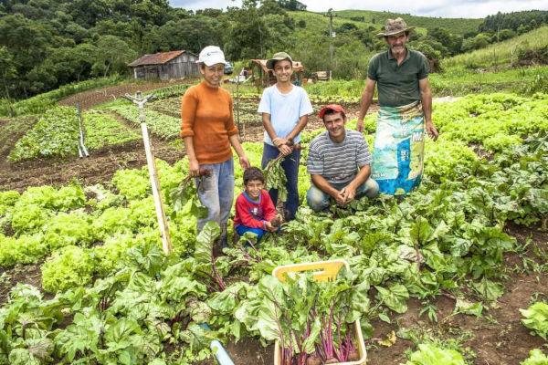 Minifúndio são pequenas propriedades rurais pertencentes a uma família, que tira da terra o seu sustento. *