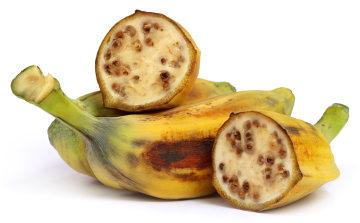 A Musa balbisiana é uma espécie de banana que possui sementes