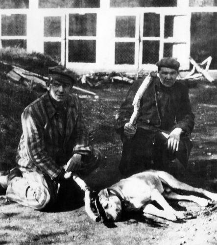 Prisioneiros encontrados no campo de concentração de Dachau em foto de 1945.
