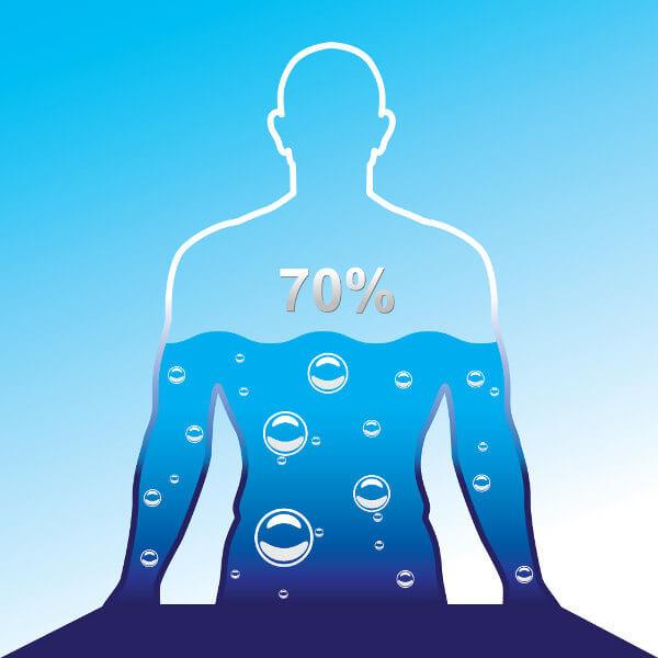 O ser humano apresenta cerca de 70% do corpo composto por água.