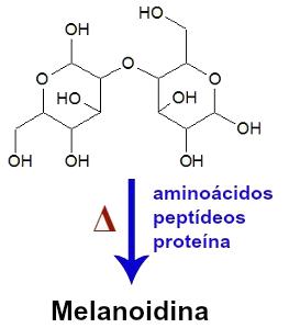 Equação que representa a reação de Maillard