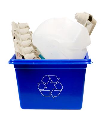 A reciclagem de embalagens cartonadas resulta em vários materiais, como as bandejas de ovos