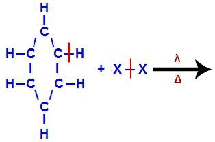 Quebra de ligações entre grupos fundamentais na halogenação