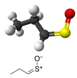 Estrutura do sulfóxido de tiopropanal