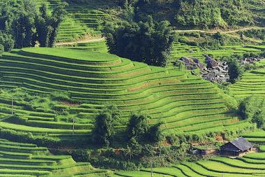 A técnica do terraceamento foi desenvolvida em sociedades pré-capitalistas