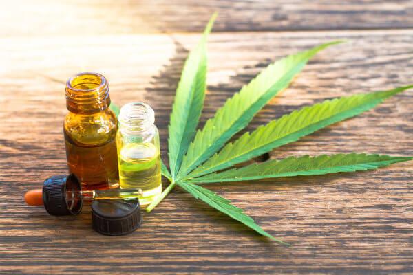 A maconha apresenta substâncias que podem ser usadas na medicina.