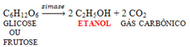 Atuação da zimase como catalisadora da reação de formação do etanol a partir da glicose e frutose