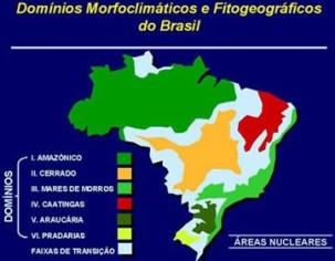 Mapa dos domínios naturais do Brasil