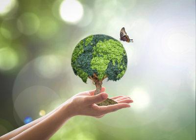 A preservação do meio ambiente é uma tarefa de todos!