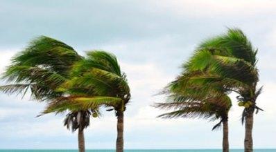 A circulação atmosférica é responsável pelos ventos e pelos movimentos das massas de ar