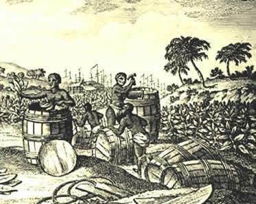 O sistema de plantation empreendeu diversos problemas de ordem econômica e social no Brasil.