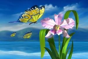Beleza, valor estético da criação da criação humana.