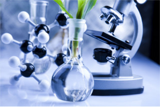 Os compostos orgânicos estão presentes em organismos vegetais e animais, bem como em compostos artificiais ou sintéticos