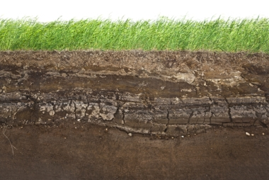 Os solos possuem diferentes formas de classificação