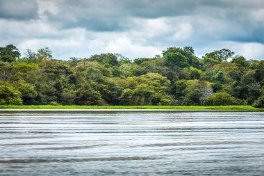 O Domínio Morfoclimático da Amazônia possui grande diversidade e é o maior do Brasil