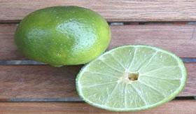 O sabor do limão caracteriza os ácidos