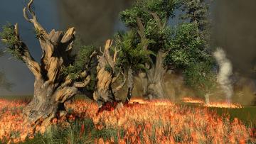 O aumento da temperatura do planeta pode aumentar os riscos de incêndios