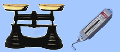Balança de braços em equilíbrio e um dinamômetro graduado em quilogramas