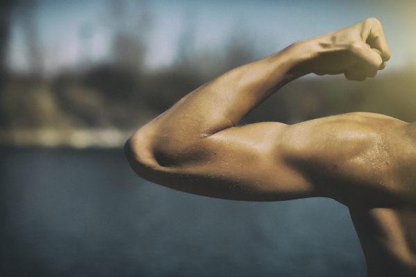 A testosterona relaciona-se com o aumento da massa muscular