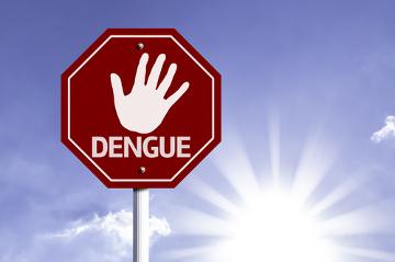 Para combater a dengue, é importante a colaboração de todos