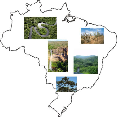 O Brasil apresenta uma grande diversidade paisagística
