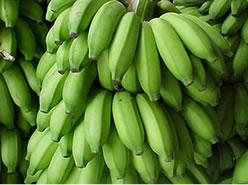 O sabor adstringente da banana verde caracteriza as bases