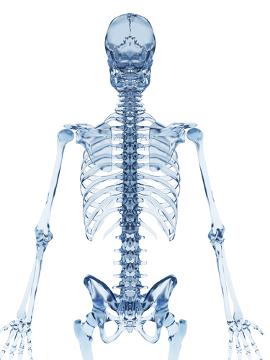 A osteogênese imperfeita é chamada de doença dos ossos de vidro em razão da fragilidade dos ossos do portador