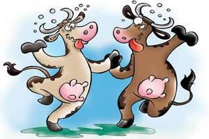Ao contrário do que o nome sugere, as vacas acometidas pela BSE ficam retraídas e assustadas.