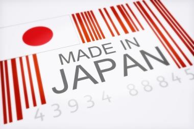 O modelo japonês baseou-se pelos altos índices de exportação de produtos de alta tecnologia