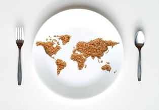 O Dia Mundial da Alimentação é comemorado no dia 16 de outubro