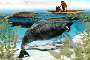 Vaca-marinha: animal extinto no século dezessete.