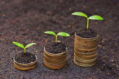 O desenvolvimento sustentável procura conciliar crescimento econômico e preservação natural