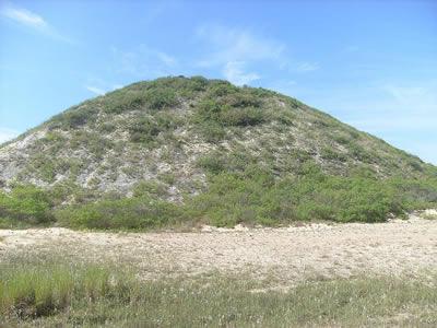 Sambaqui no litoral catarinense. As montanhas de conchas são uma rica fonte de estudo arqueológico no Brasil