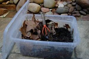Minhocário: uma solução para o problema do lixo orgânico.