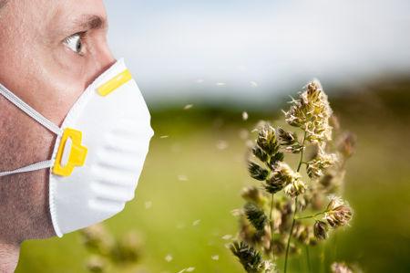 As alergias são uma resposta exagerada do sistema imune a um determinado antígeno