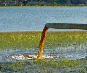 Detritos domésticos são lançados nas águas e, mesmo em pequenas quantidades (ppm), podem provocar poluição