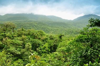 Área de floresta tropical na Costa Rica