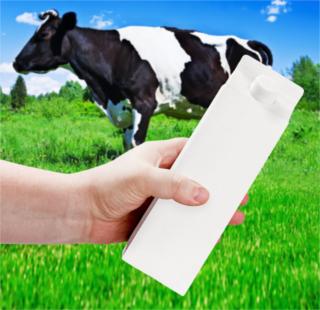 São usados alguns meios para diminuir o impacto que a produção e uso das embalagens cartonadas pode ter sobre o meio ambiente