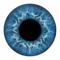Identificação biométrica pela íris