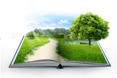 A meta ambiental é uma política de melhoria das condições naturais do país