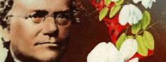 Gregor Mendel: o
