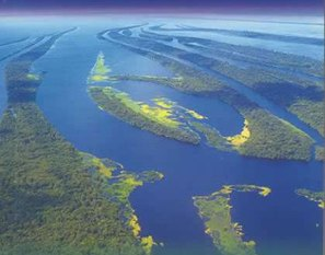 Rio Amazonas, o principal da Bacia Amazônica.