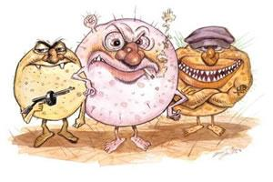 Bactérias que provocam a meningite