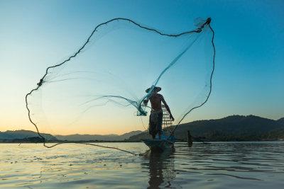 A pesca com rede pode ocasionar a seleção direcional