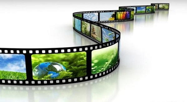 Cinco filmes para estudar Biologia