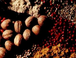 As drogas do sertão: diversificação das atividades coloniais.