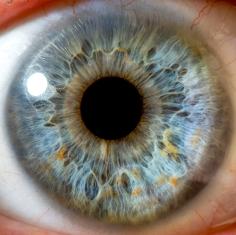 A deficiência em Vitamina A pode causar diversos distúrbios oculares