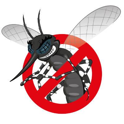 Vacina contra a dengue
